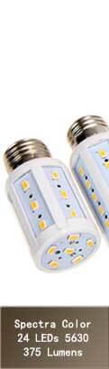 Ampoule Spectra Color 375Lm