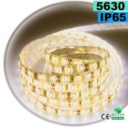 Strip Led Blanc Chaud Léger SMD 5630 IP65 60 led / m 5m