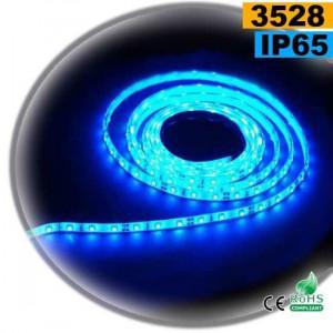 Strip Led bleu SMD 3528 IP65 60leds/m 5m