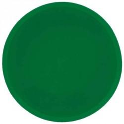 Filtre silicone couleur vert