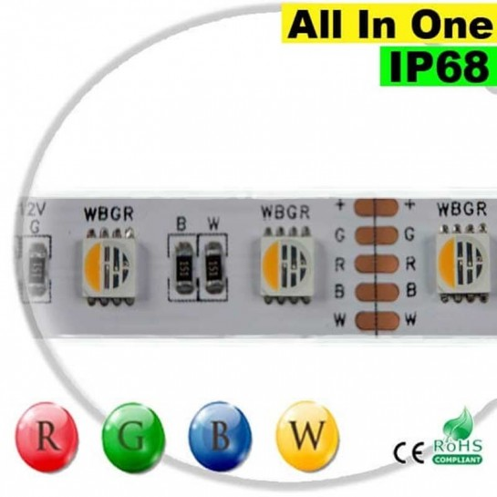 "Strip LEDs RGB-WW IP68 - LED ""All in one"" 5 mètres"