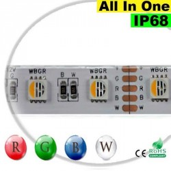 "Strip LEDs RGB-W IP68 - LED ""All in one"" 5 mètres"