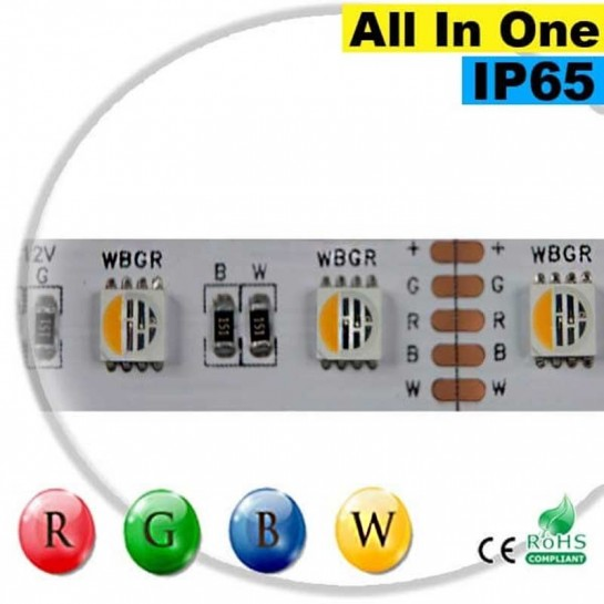 "Strip LEDs RGB-WW IP65 - LED ""All in one"" 30 mètres"