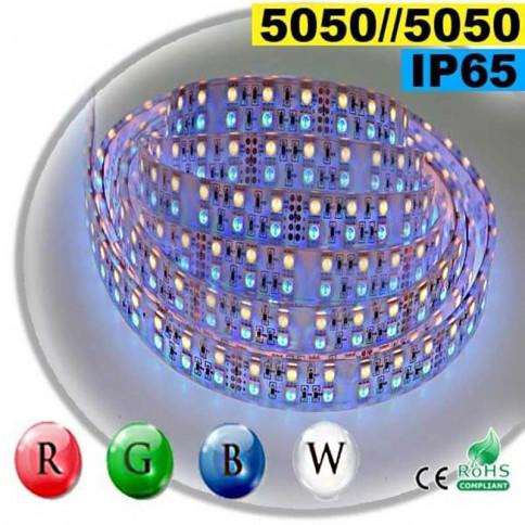 Strip LEDs large RGB-W de 20mm IP65 - Double assemblage de LEDs 5050 5 mètres