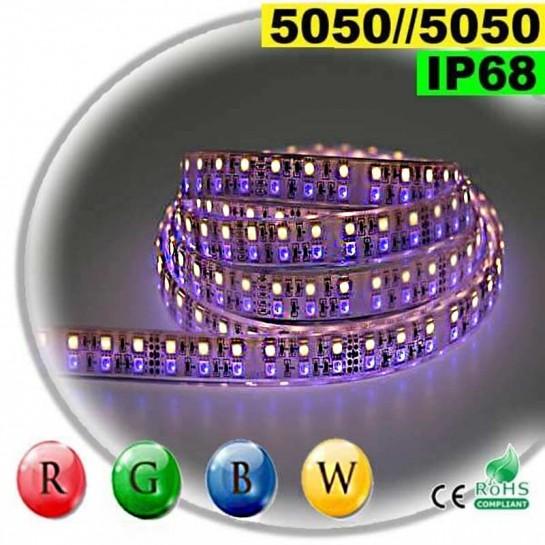 Strip LEDs large RGB-WW de 20mm IP68 - Double assemblage de LEDs 5050 5 mètres
