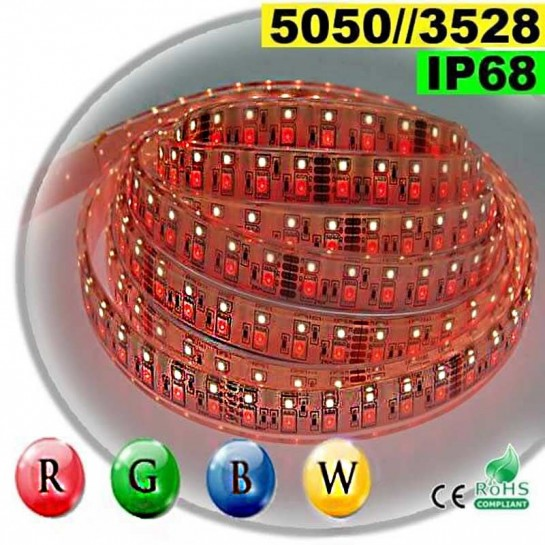 Strip LEDs RGB-WW IP68 - Double assemblage de LEDs 5050 et 3528 5 mètres