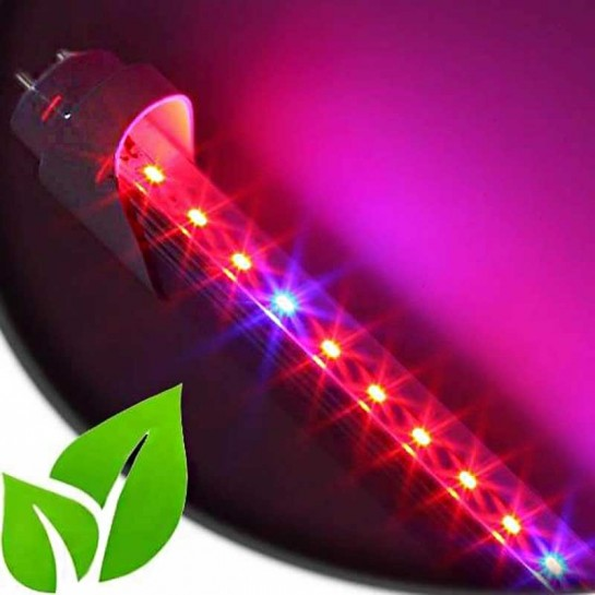 Tube LED Horticole SMD 3528 Longueur 900mm