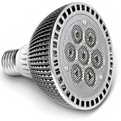 Ampoule PAR30 Efficiency-LED® 7 LEDs high power de 1 watts