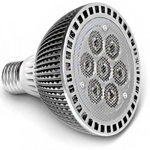 Ampoule PAR30 Efficiency-LED® 7 LEDs high power de 1 watts
