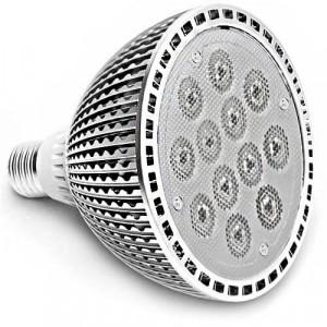 Ampoule PAR38 Efficiency-LED® 12 LED high power de 1 watts