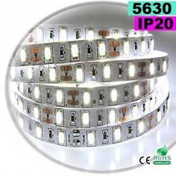 Strip Led blanc SMD 5630 IP20 60leds/m 5m