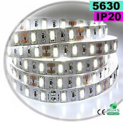 Strip Led blanc SMD 5630 IP20 60leds/m 30 mètres