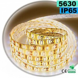 Strip Led blanc chaud SMD 5630 IP65 60 led / m 30 mètres