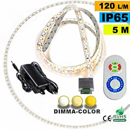 Pack Strip Led 30 mètres Dimma Color 3528 ip65 120 leds