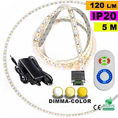 Pack Strip Led sur mesure Dimma Color 3528 ip20 120 leds