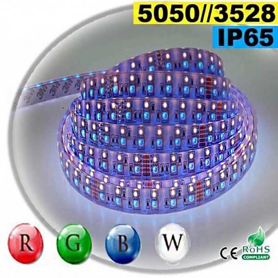 Strip LEDs RGB-W IP65 - Double assemblage de LEDs 5050 et 3528 sur mesure