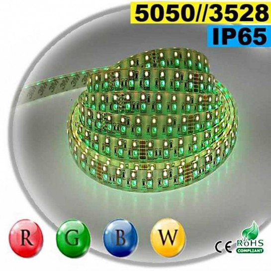 Strip LEDs RGB-WW IP65 - Double assemblage de LEDs 5050 et 3528 5 mètres