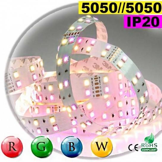 Strip LEDs large RGB-WW de 20mm IP20 - Double assemblage de LEDs 5050 5 mètres