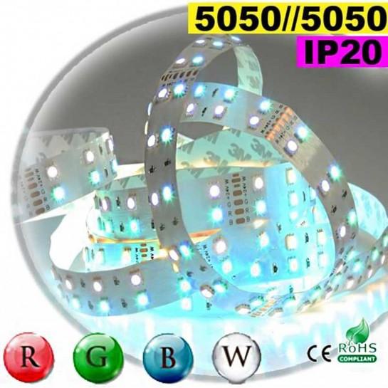 Strip LEDs large RGB-W de 20mm IP20 - Double assemblage de LEDs 5050 5 mètres