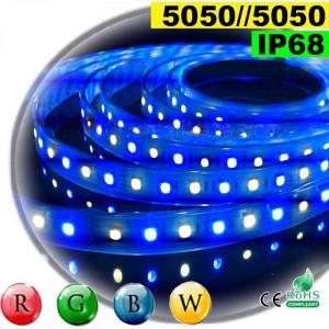Strip Led RGB-WW IP68 60leds/m SMD 5050 5m