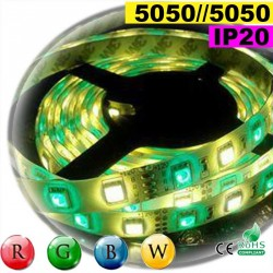 Strip Led RGB-WW IP20 60leds/m SMD 5050 rouleau de 30 mètres