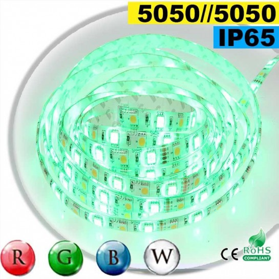 Strip Led RGB-W IP65 60leds/m SMD 5050 5m