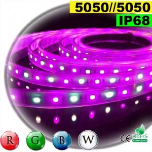 Strip Led RGB-W IP68 60leds/m SMD 5050 5m