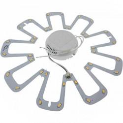 Circline LED Ø 240mm - 36 LED 5630 - 18 watts