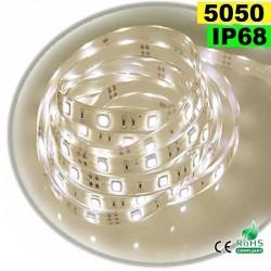 Strip Led blanc chaud leger SMD 5050 IP68 30leds/m 5m