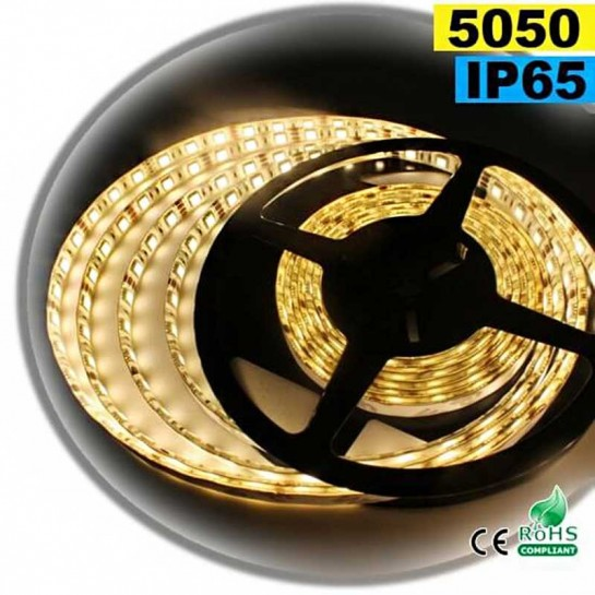 Strip Led blanc chaud SMD 5050 IP65 60leds/m sur mesure
