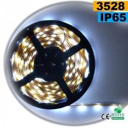Strip Led blanc SMD 3528 IP65 60LED/m