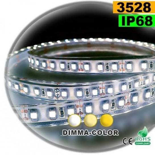 Strip LED dimma-color 3528 ip68 120LED/m 5m