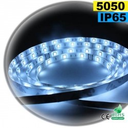 Strip LED blanc SMD 5050 IP65 30leds/m sur mesure