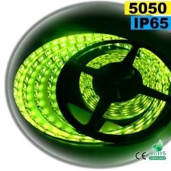 Strip LED vert SMD 5050 IP65 60LED/m 5m