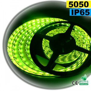 Strip LED vert SMD 5050 IP65 60LED/m 5m
