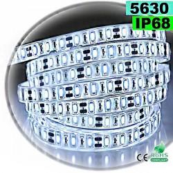Strip Led blanc SMD 5630 IP68 60leds/m 5m
