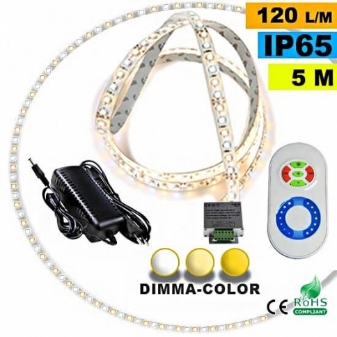 Pack Strip LED 5m Dimma Color 3528 IP65 120LED