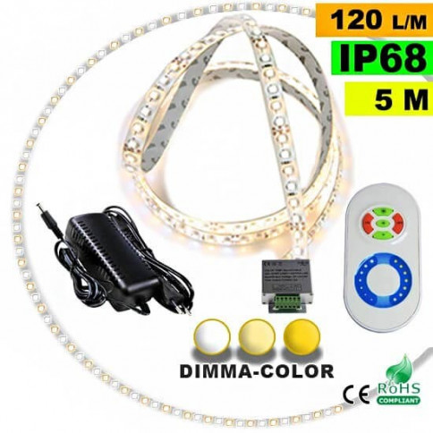 Pack Strip LED 5m Dimma Color 3528 IP68 120LED