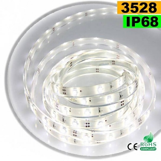 Strip Led blanc SMD 3528 IP68 30leds/m 5m