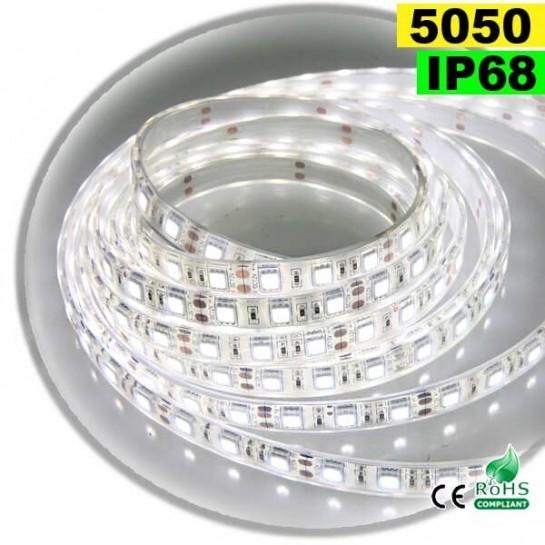 Strip Led blanc SMD 5050 IP68 60LED/m 5 mètres