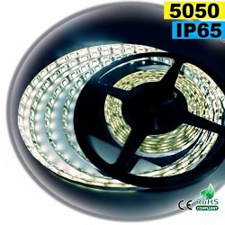 Strip Led blanc SMD 5050 IP65 60leds/m 30m
