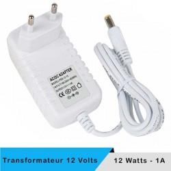 Transformateur 12 volts - 24 watts sur prise boitier blanc