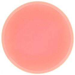 Filtre silicone couleur saumon