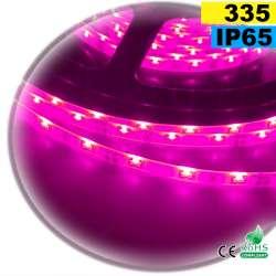 Strip LED latérale couleur rose LED-335 IP65 120 LED/m 30 mètres