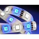 Strip LED RVBW multicolore + Blanc