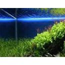 Tube LED aquarium