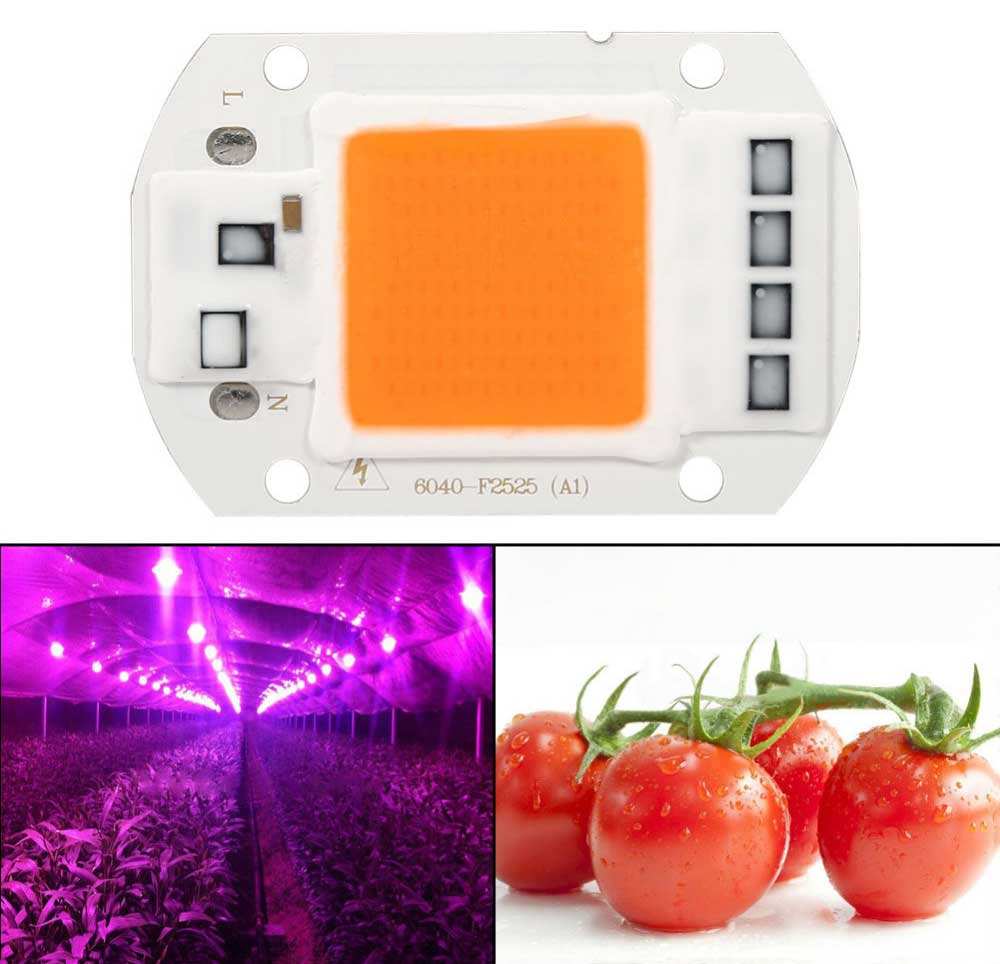 LED horticole full spectre AC LED COB de 20 watts horticole alimentation 230 volts