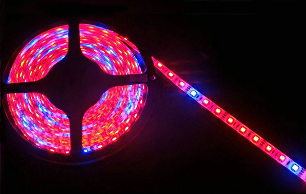 Strips LED horticole 12 volts ratio 7-1 rouge et bleu